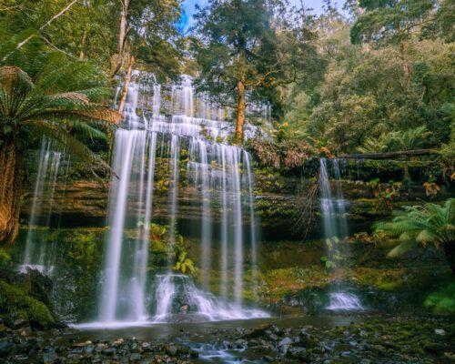 sassafras-tasmania-location-101